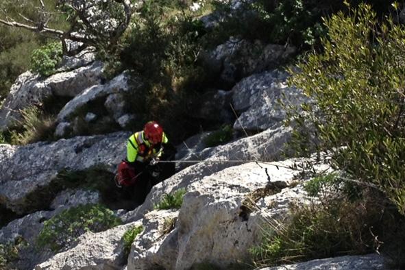 Monte Albo: due cani da caccia precipitano in un canalone