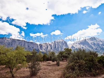 Oliena, il Monte Corrasi (© foto S.Novellu)