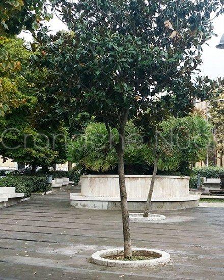 Nuoro, piazza Vittorio Emanuele (foto S.Novellu)