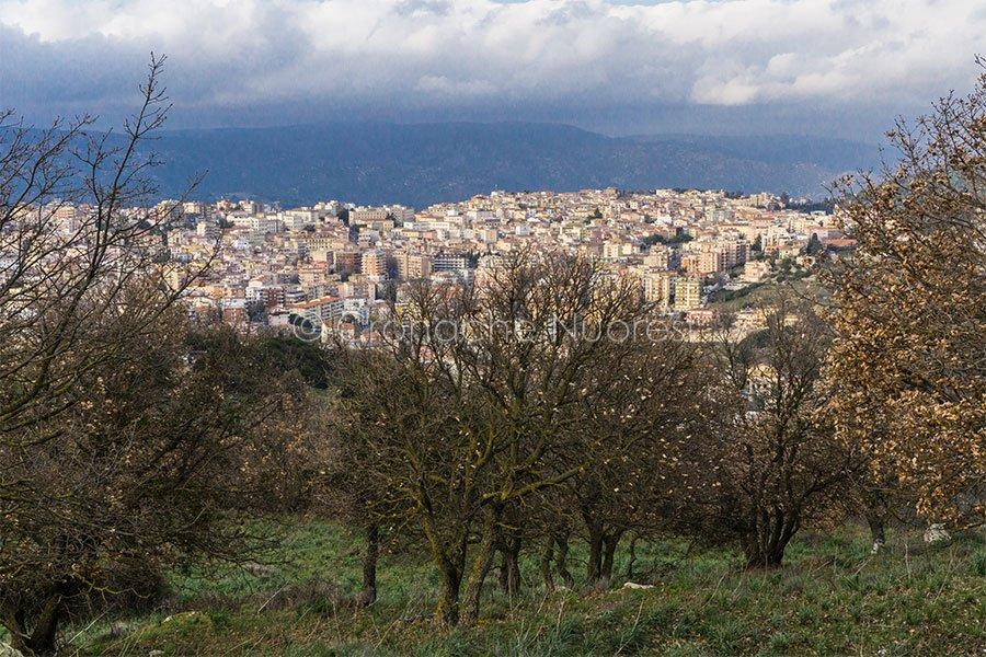 Panoramica di Nuoro (foto S.Novellu)
