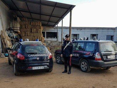 I Carabinieri nell'azienda agricola a Escalaplano