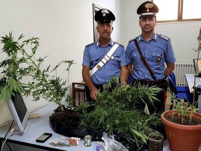 I carabinieri con la droga sequestrata