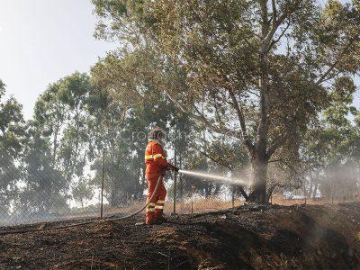 Operatore dell'Ente foreste alle prese con un incendio (foto S.Novellu)