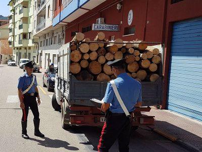 I Carabinieri col carico di legna sequestrato