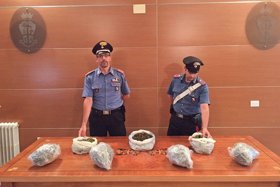 I Carabinieri con la marijuana sequestrata a Oliena