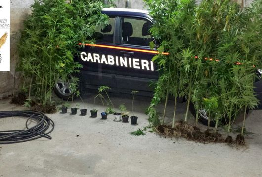 Tortolì, i Carabinieri con la marijuana sequestrata