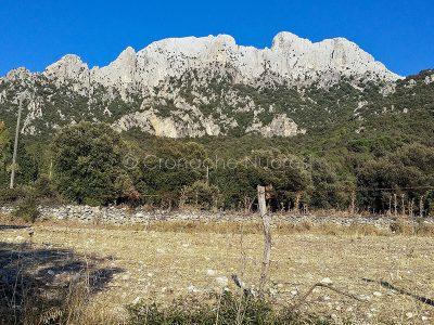 Uno scorcio del Monte Maccione (Foto Cronache Nuoresi)