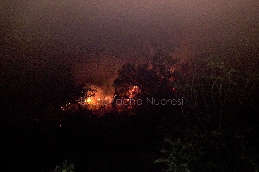 Incendio di vaste proporzioni a Sarule
