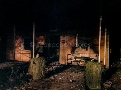 I resti dell'abitazione dopo il rogo (foto VVF)