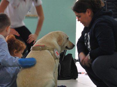 Una seduta di pet therapy