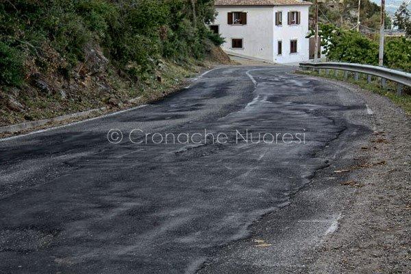 Il tratto stradale di competenza della Provincia sistemato dai giovani e associazioni di Orune