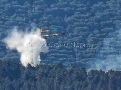 Un canadair in azione nell'incendio a Arzana