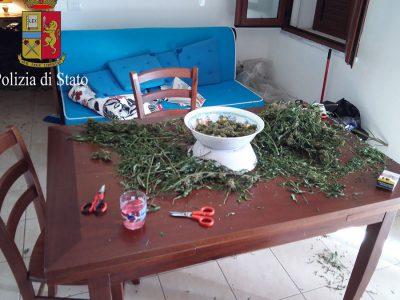 La Marijuana sequestrata dagli agenti