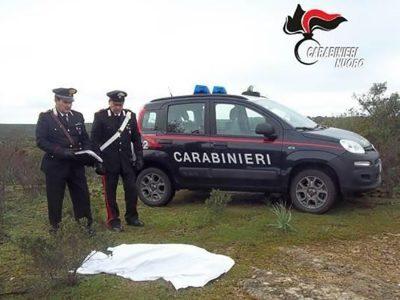 I Carabinieri davanti al corpo del Labrador