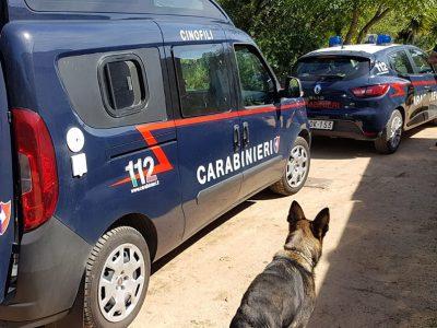 Le unità cinofile dei Cacciatori di Sardegna