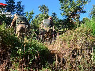 Carabinieri sulle tracce dei dispersi