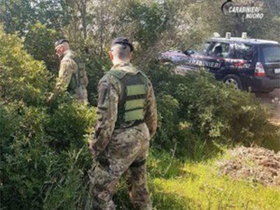 I Carabinieri sul luogo della rapina