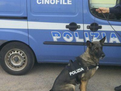 Unità cinofile Polizia di Stato