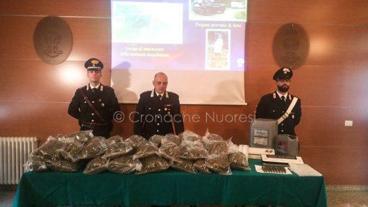 Nuoro, la conferenza stampa sul sequestro di droga a Orani