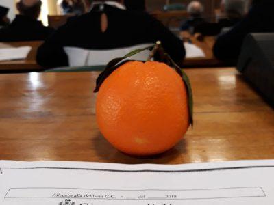 Le arance consegnate al sindaco
