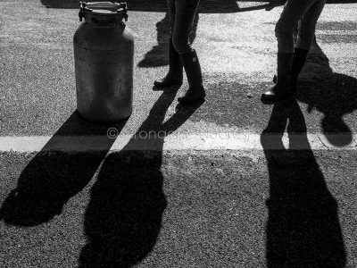 La guerra del latte in Sardegna (foto S.Novellu)