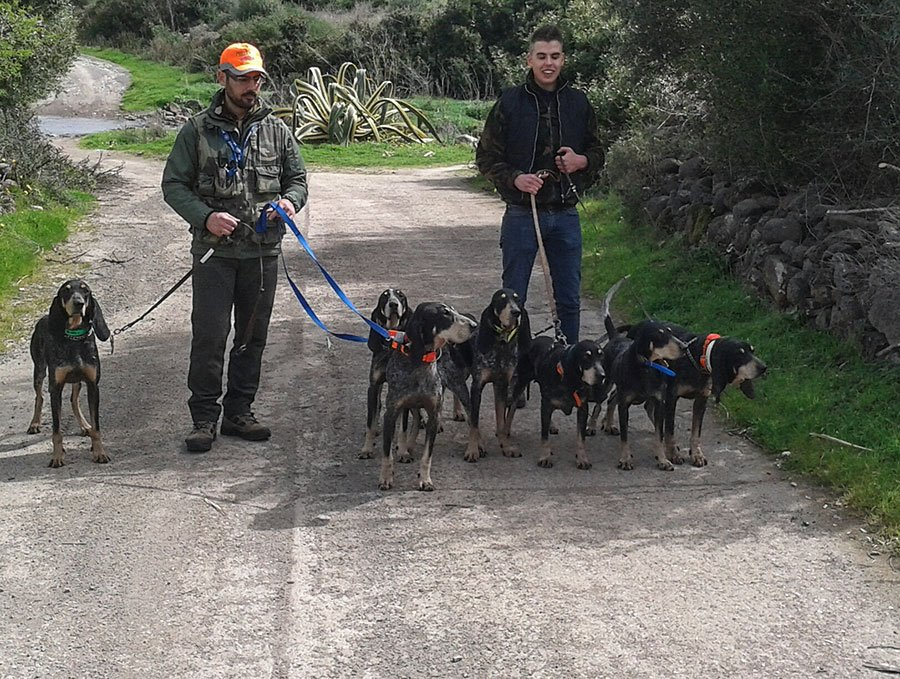 Due allevatori di cani da caccia sezionati