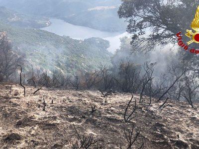 L'incendio nelle campagne di Ollolai