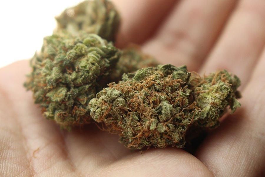 2 kg di marijuana nascosti in campagna scovati dai Carabinieri e sequestrati