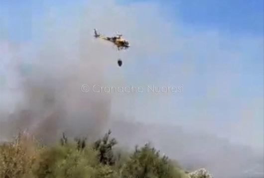 L'antincendio doma le fiamme nei pressi di Siniscola