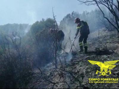 Il personale della Forestale durante le operazioni di spegnimento di un incendio