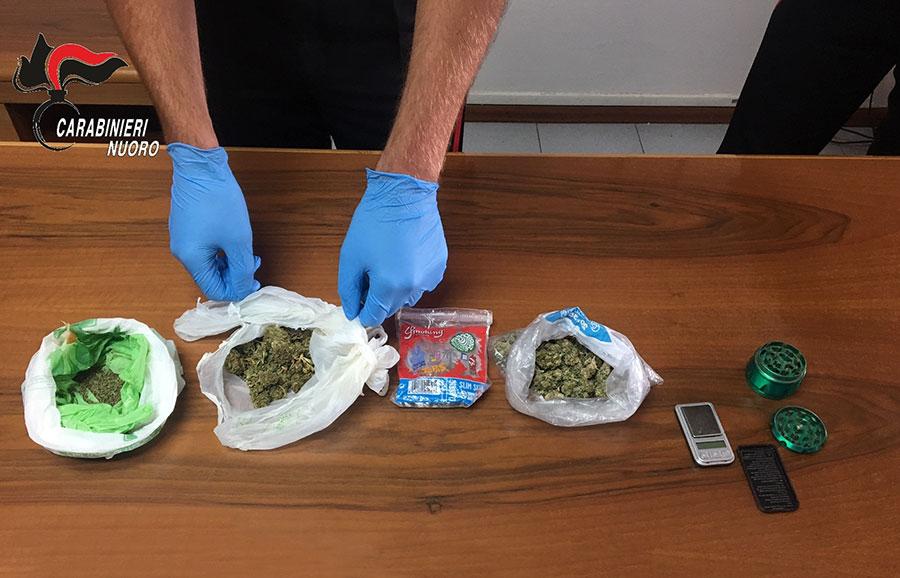 La marijuana sequestrata a Osini