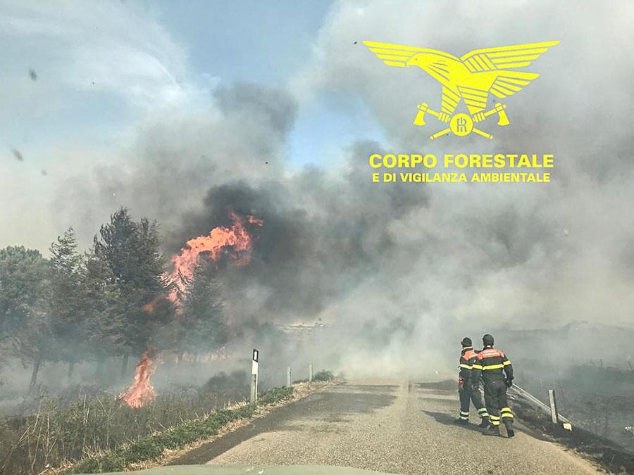 L'incendio nelle campagne di Bitti