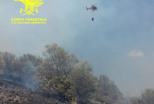 Un intervento dell'elicottero della Forestale