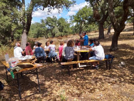 L'area picnic nel sito archeologico di Noddule