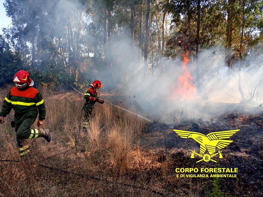 L'incendio nelle campagne di Sindia