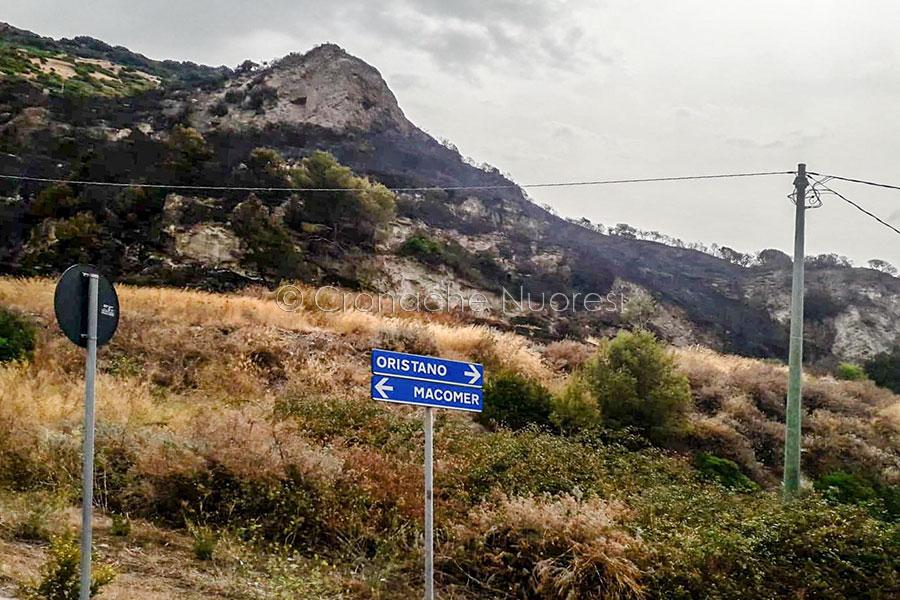 Le campagne di Bosa dopo l'incendio (foto Flavia Novellu)