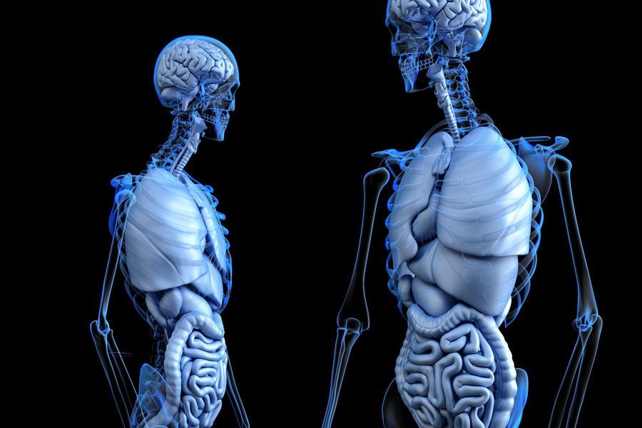 Tumori: meno di 1 italiano su 2 fa lo screening colon-retto