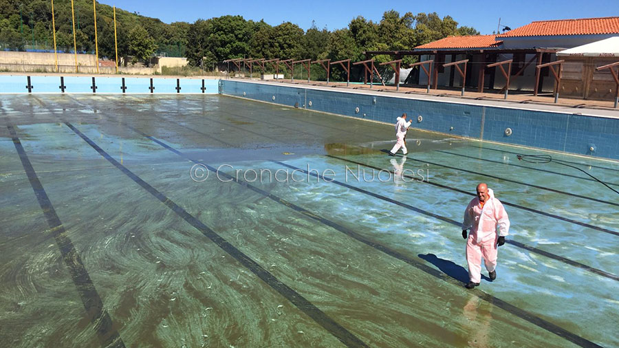 Lavori di pulizia alla piscina di Farcana