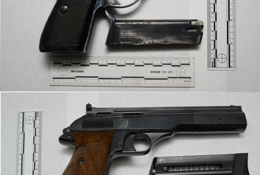 Le pistole rinvenute dalla Polizia a Gavoi