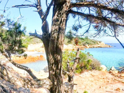 Spiaggia del Principe (foto Cristian Mele)