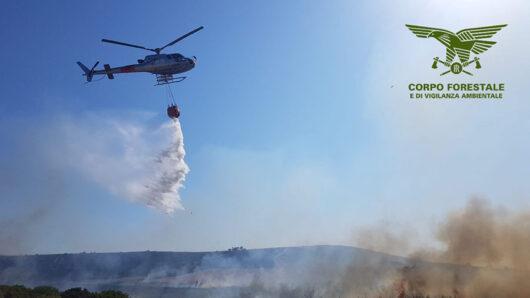 Incendio nelle campagne di Norbello