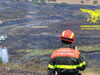 La Forestale dirige le operazioni antincendio.jpg