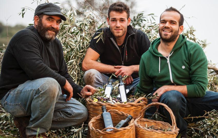 L'olivocoltore di Bolotana