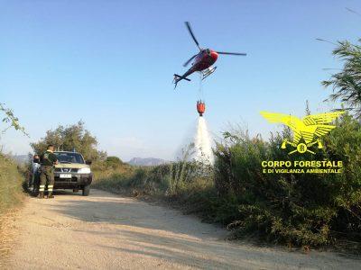 Un intervento del Corpo forestale nelle campagne di Bono