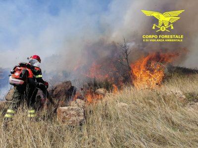 Il Corpo forestale impegnato nell'incendio di ogg
