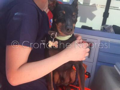 Toby assieme a un'altra operatrice del 118