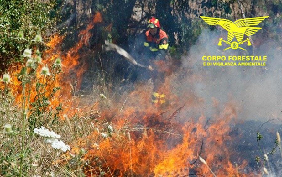 Arrestato dalla Forestale un piromane seriale: è accusato di aver appiccato nove incendi devastanti