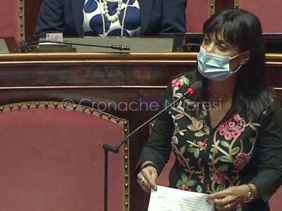 Il senatore del M5s Elvira Lucia Evangelista