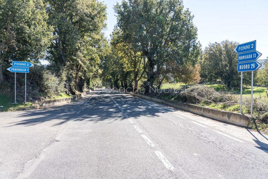 Fonni. Non si erano fermati a un posto di blocco e, inseguiti e scoperti, hanno aperto il fuoco contro i Carabinieri