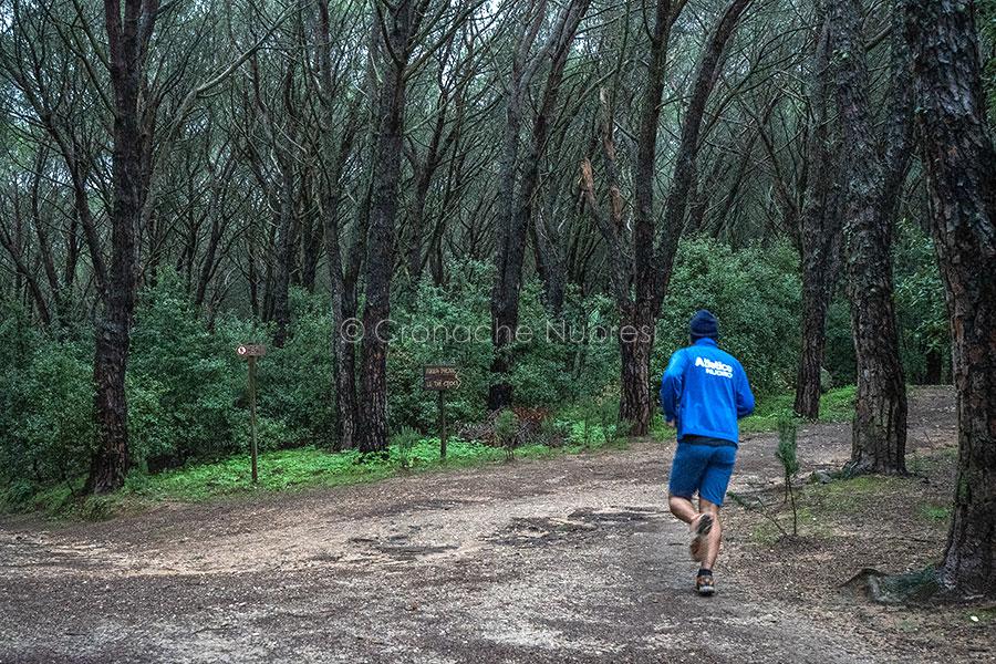 Nuoro, sport alla pineta di Ugolio (foto S.Novellu)